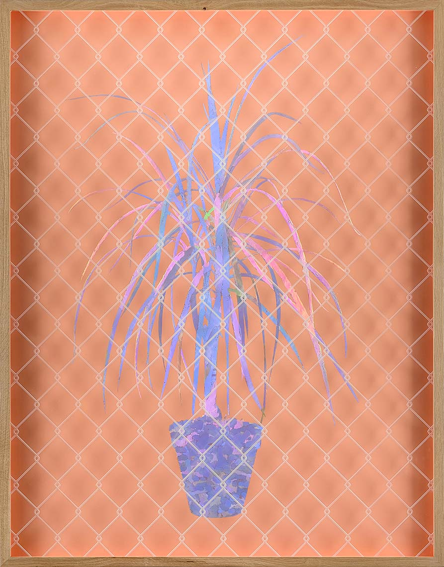Future-Plant-Peach-2016-Mixed-Media-42x33-inches